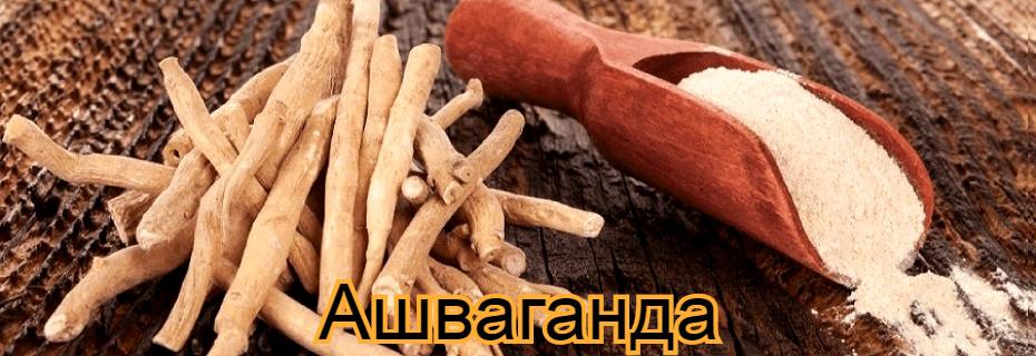 Здравословните ползи от използването на Ашваганда