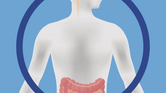 Пробиотиците могат да помогнат за повишаване на настроението и когнитивната функция