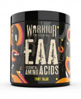 Warrior EAA