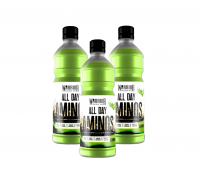 Warrior All Day Aminos 12 x 500 ml 1