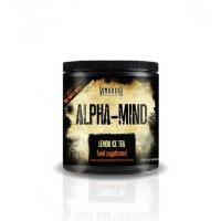 Warrior Alpha Mind