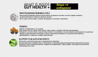 GUT HEALTH + 2