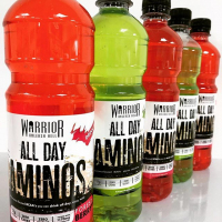 Warrior All Day Aminos 12 x 500 ml 3